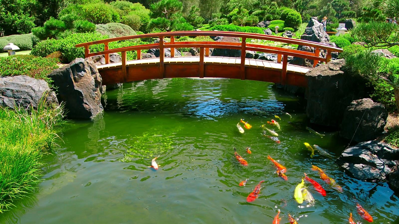 GallianMachi Japanese Beautiful Garden