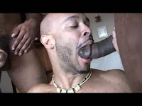 Boys na Web - Download Gay Videos