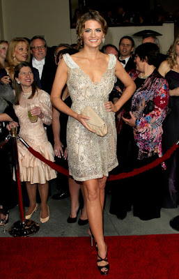 Stana Katic Beaded Dress