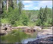 June Photos Buck Creek