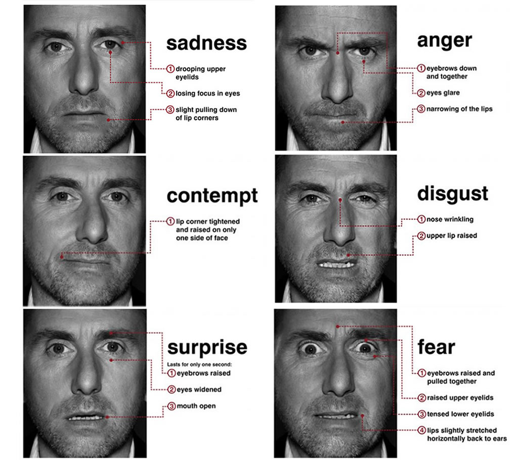 Psycovate Facial Expressions And Body Language