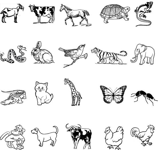 Download Modul Bahasa Inggris tentang Animal