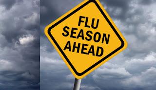 flu season 2013 - 2014