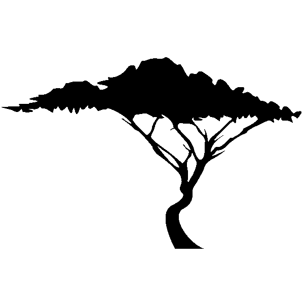 Math et info p szt test 09 dessiner l 39 ordinateur - Arbre africain en 7 lettres ...