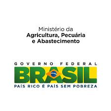 Eu Acredito Neste Brasil