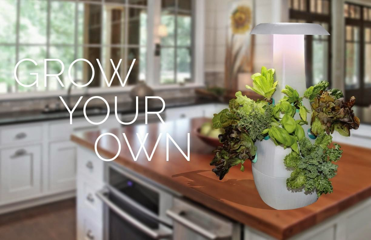 Hydroponic Kitchen Herb Garden 15 Coolest Gadgets For Your Kitchen Garden