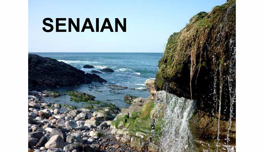 SENAIAN
