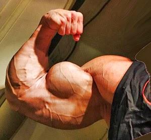 Pete Lind's Arm