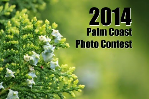 Palm Coast Photography Contest 2014