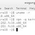 Fedora 18: Menghapus Kernel Tidak Terpakai