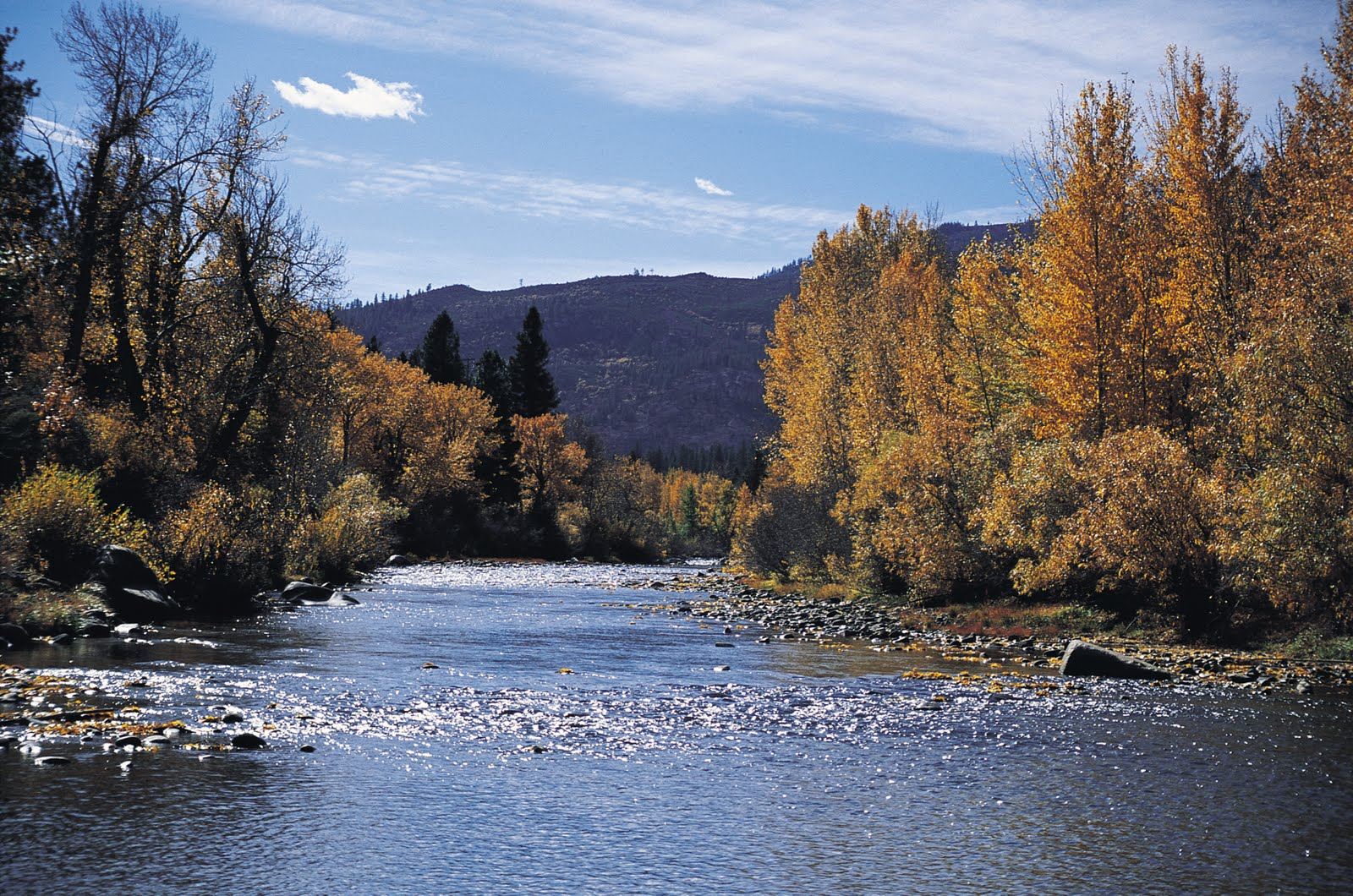 about floating the truckee river from tahoe city to river ranch