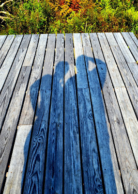 Shadows on Boardwalk. Wenham, Massachusetts