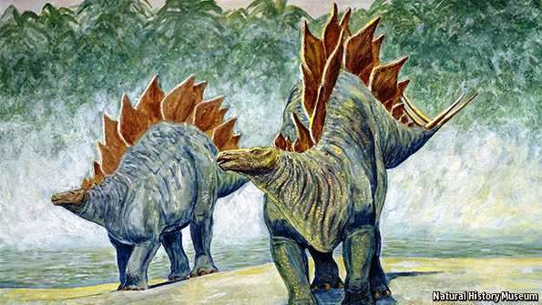 A boy and a girl stegosaurus