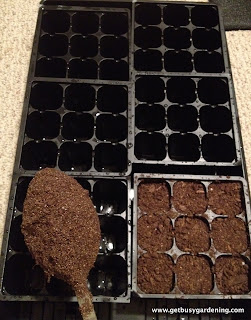 Filling seed start cells with dirt