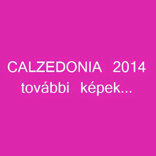 Calzedonia 2014 bikini fürdőruha további képek