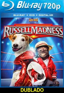 Russel o Cãopeão