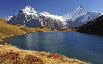 Lake Bachalpsee and landscape