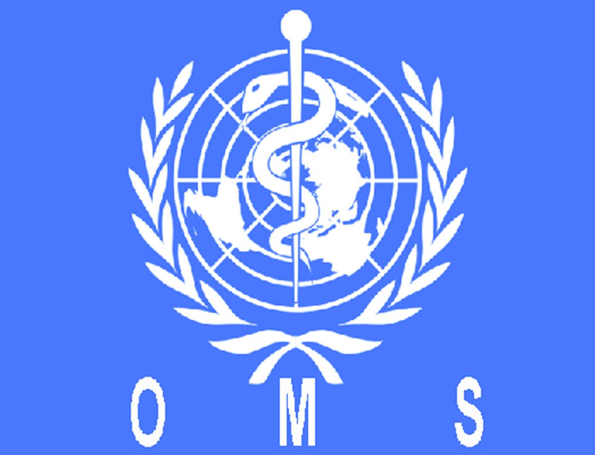 Principios de la OMS (Organización Mundial de la Salud) | Gabinete ...