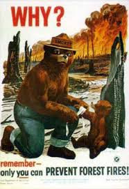 Smokey the Bear asks...