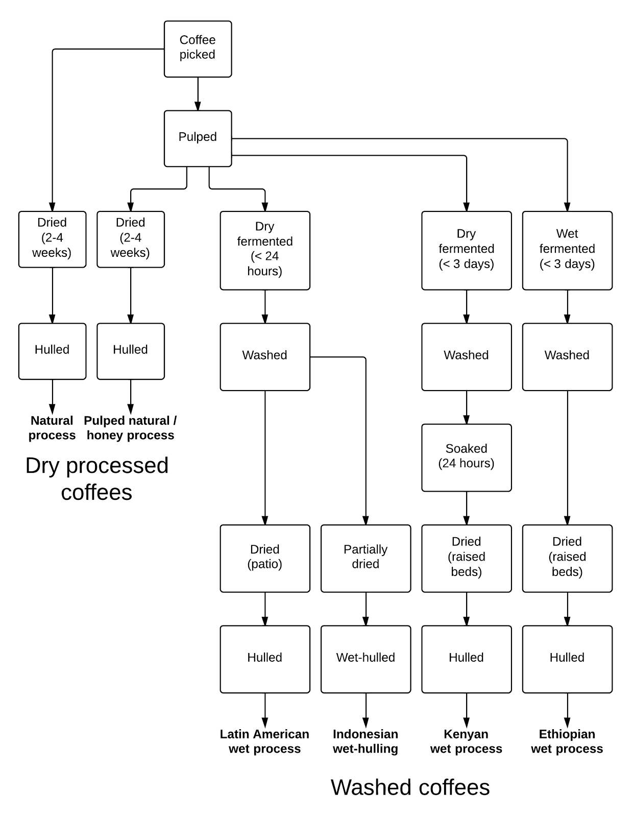 Natural Process Vs Washed Coffee
