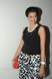 Hamsa Nandini pos at attarintiki daredi audio 031.jpg