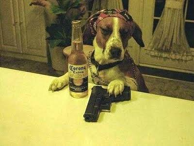 perro pistola