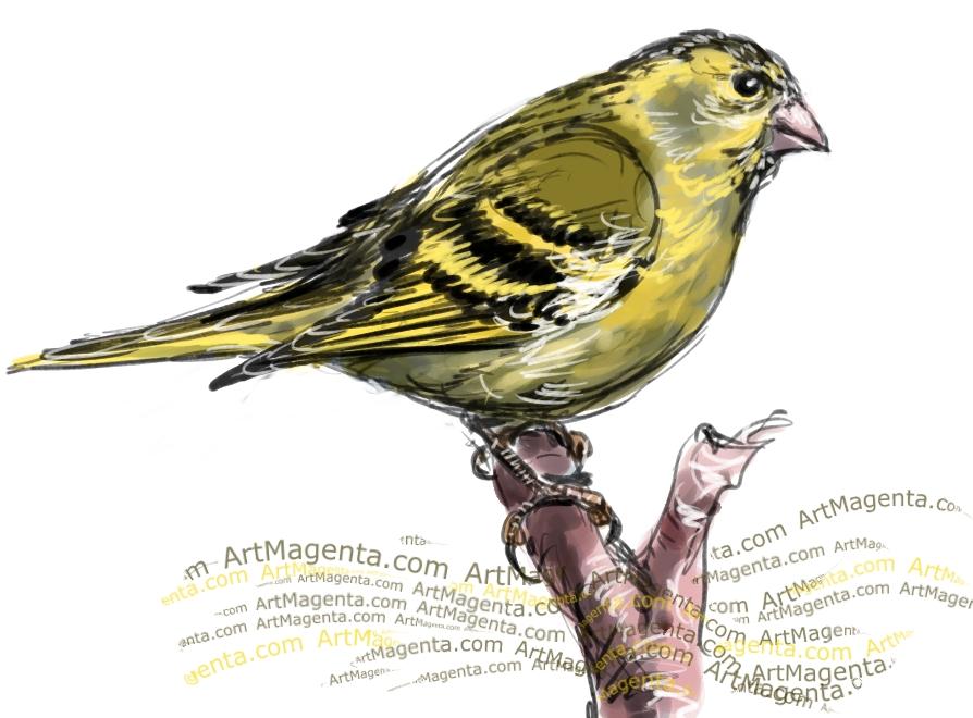 En fågelmålning av en grönsiska från Artmagentas svenska galleri om fåglar