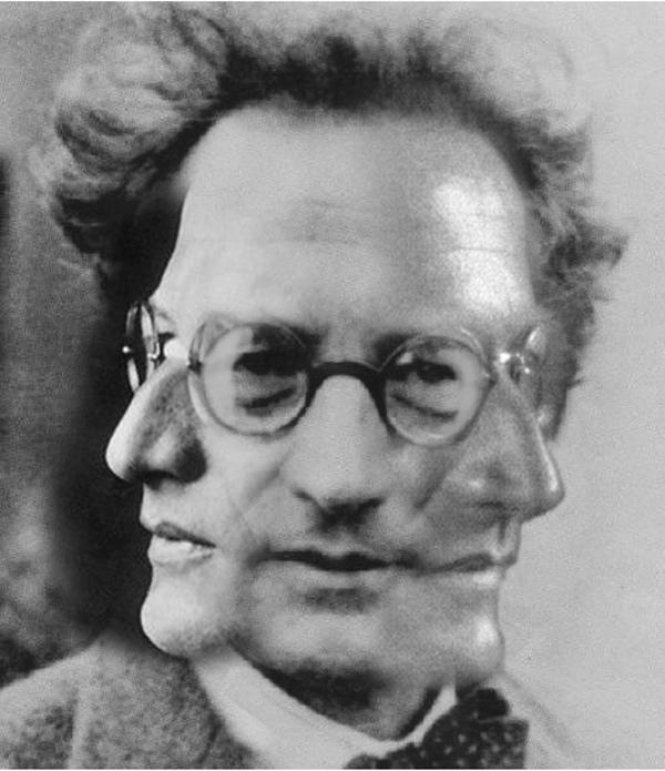 erwin schrodinger Erwin rudolf josef alexander schrödinger (12 août 1887 à vienne 4 janvier 1961) est un physicien et théoricien scientifique autrichien.
