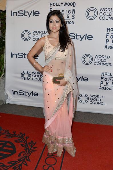 Shreya In Saree