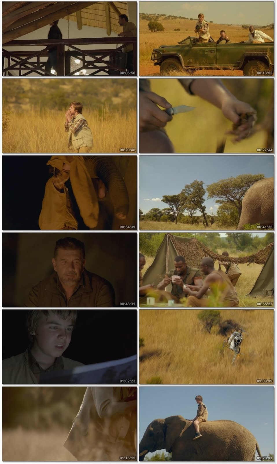 Screen Shot Of An Elephant's Journey 2018 Full Movie Download Free Watch Online 300MB