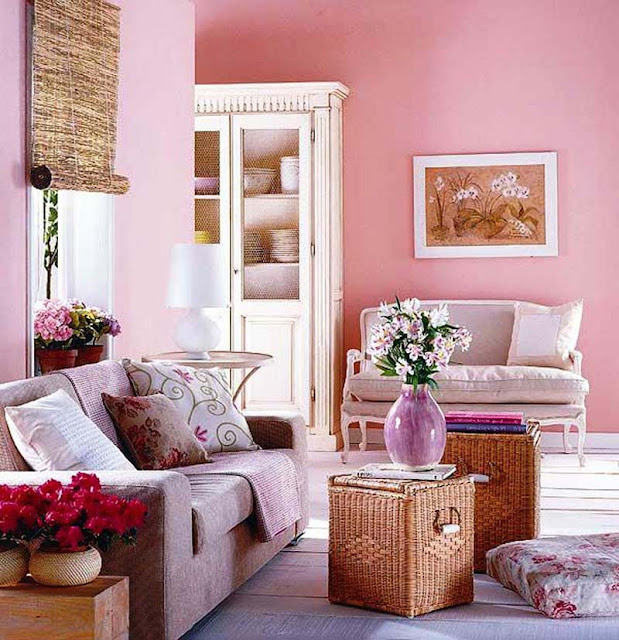 Pink Living Room Design Ideas photo