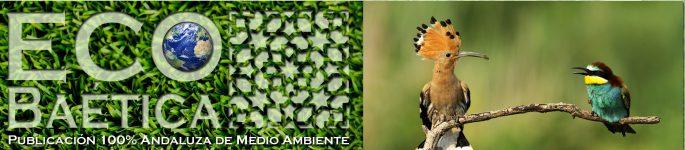 Revistas y blogs de  Educación Medioambiental y ecologista