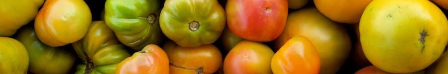 Le répertoire des tomates du monde