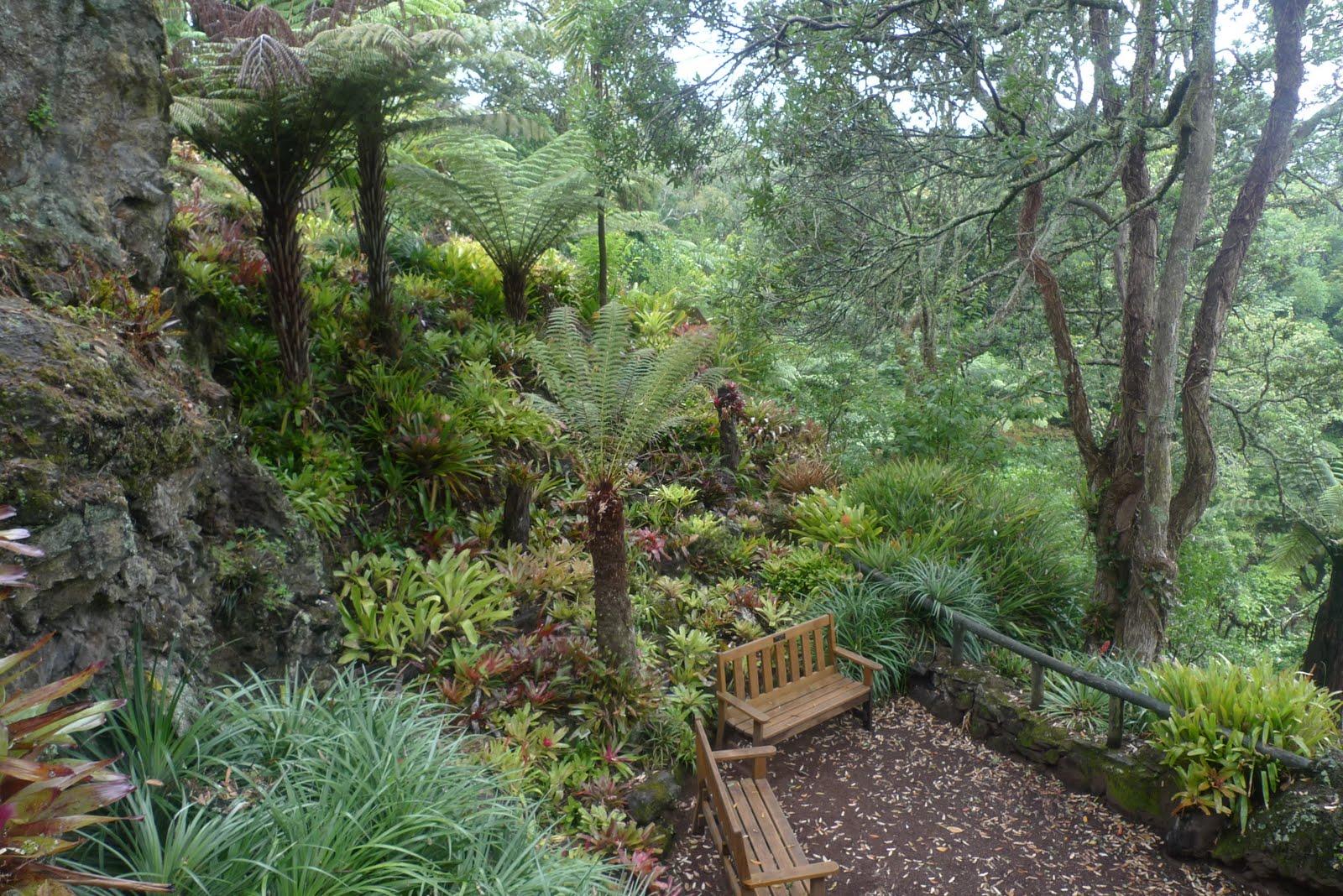 A new zealand garden a yorkshire garden designer for Garden design nz
