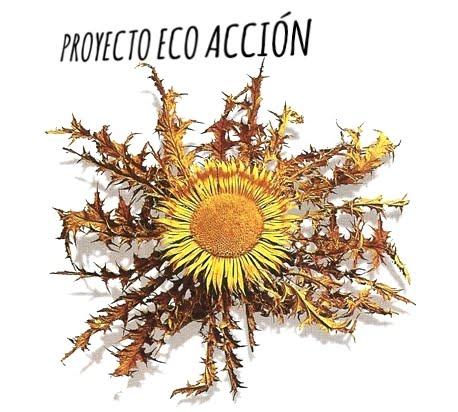 Eco Acción
