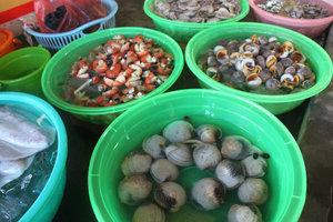 Fish market in Hàng Dương beach town