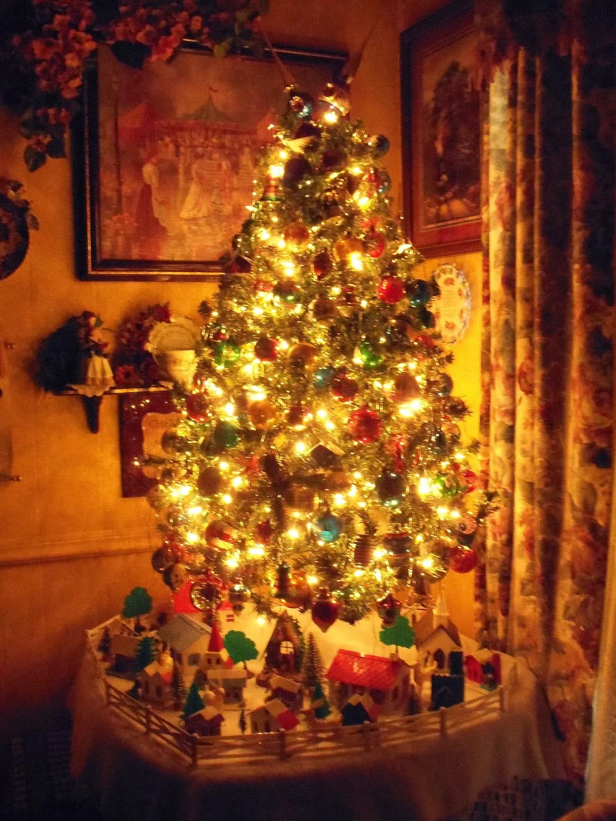 19 Christmas Trees 2012!!