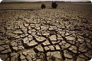 BMKG Nilai El Nino di Mimika Tidak Berdampak Besar