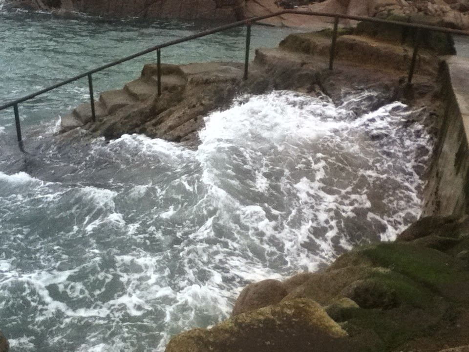 Forty Foot Swimming Steps