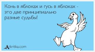 Яблок Анекдот