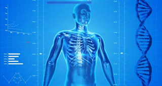 3 conceitos que você saber na Fisiologia do Exercício