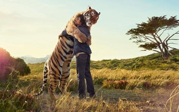 لأجمل لقطات الأحضان الحيوانات