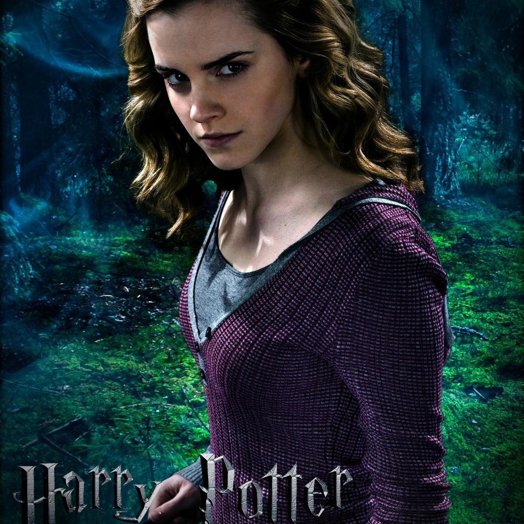 Hermione granger hermione 20granger 20is 20my 20hero