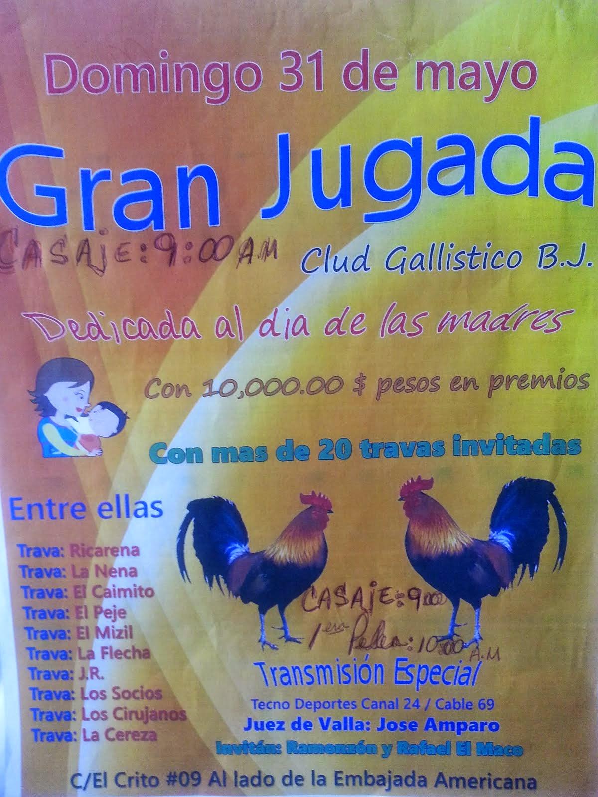 club gallistico bj con Gran Jugada Domingo 31 de Mayo con casaje a las 9:00 am