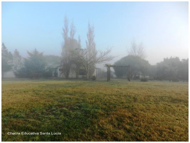 Neblina en la Chacra - Chacra Educativa Santa Lucía
