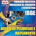 Apostila Concurso  IBGE AGENTE DE PESQUISAS E MAPEAMENTO-2014(+CD GRÁTIS)
