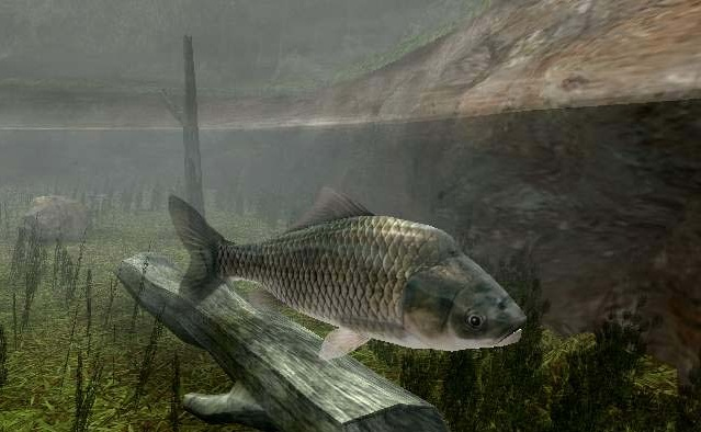 Download game reel fishing 3 ps2 full versi0n iso for pc for Fishing computer game
