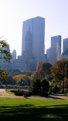 Top 10 places to visit in new york for Best places to go in central park