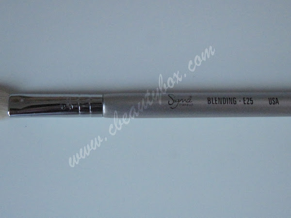 Sigma E25 Blending Brush review