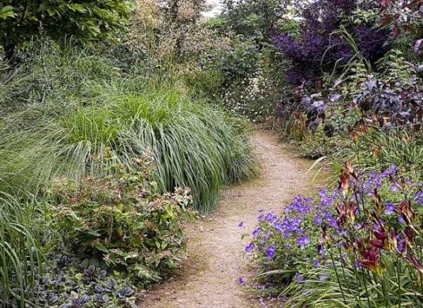 Flores e Jardins, plantas, jardinagem e paisagismo Março 2014